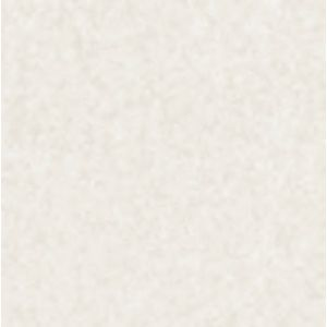 Foglio Pergam.bianca 160gr.50fg.a4 111160A4